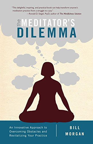 9781611802481: The Meditator's Dilemma: An Innovative Approach to Overcoming Obstacles and Revitalizing Your Practice