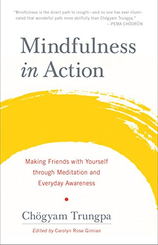 9781611803532: Mindfulness in Action: Making Friends with Yourself through Meditation and Everyday Awareness