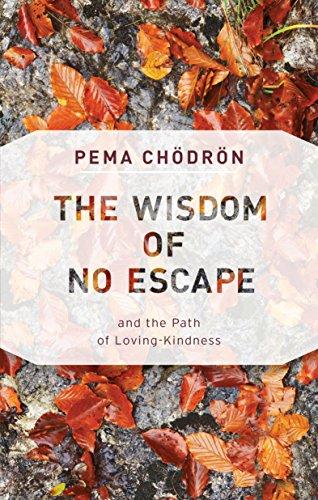 9781611806052: Wisdom of No Escape
