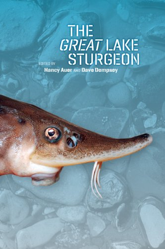 9781611860788: The Great Lake Sturgeon