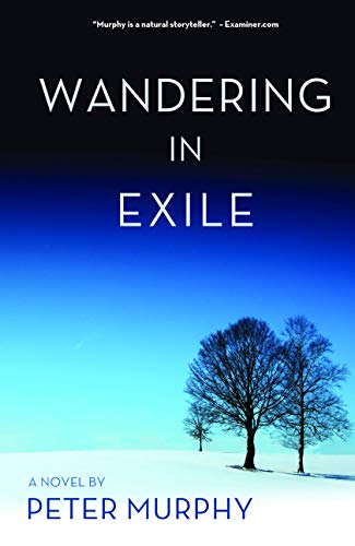 9781611881820: Wandering in Exile