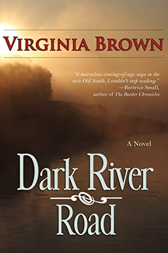 9781611940558: Dark River Road