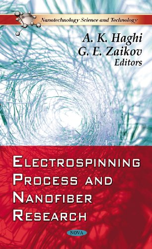 9781612093307: Electrospinning Process and Nanofiber Research (Nanotechnology Science and Technology)