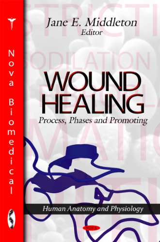 9781612098470: Wound Healing: Process, Phases and Promoting (Human Anatomy and Physiology)