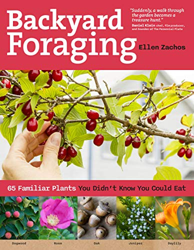 9781612120096: Backyard Foraging: 65 Familiar Plants You Didn't Know You Could Eat