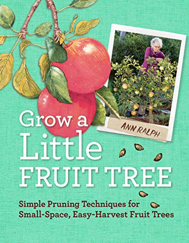 9781612120546: Grow a Little Fruit Tree: Simple Pruning Techniques for Small-Space, Easy-Harvest Fruit Trees