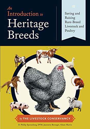 9781612121253: An Introduction to Heritage Breeds: Saving and Raising Rare-Breed Livestock and Poultry