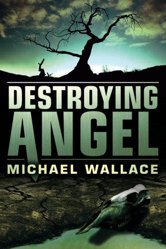 Destroying Angel (Righteous Series): Wallace, Michael