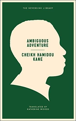 9781612190549: Ambiguous Adventure (Neversink)