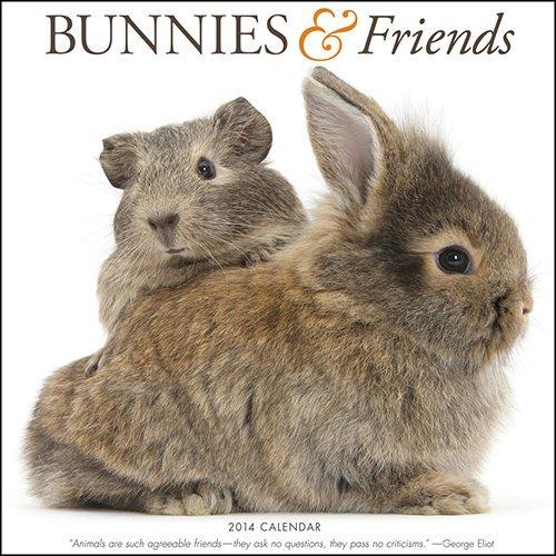 9781612230757: Bunnies & Friends 2014 Calendar