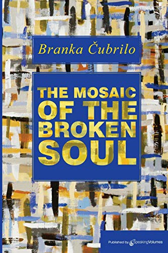 9781612320588: The Mosaic of the Broken Soul