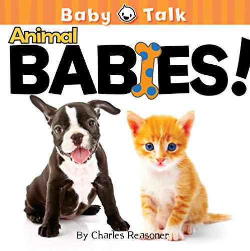 9781612360546: Animal Babies! (Baby Talk)