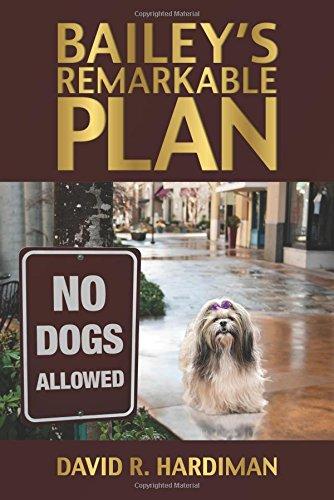 Bailey's Remarkable Plan: Hardiman, David R.
