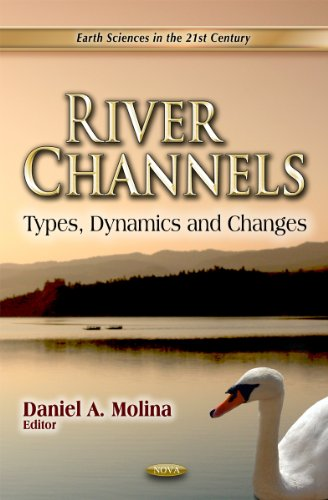 9781613241486: River Channels: Types, Dynamics and Changes: Earth Sciences in the 21st Century