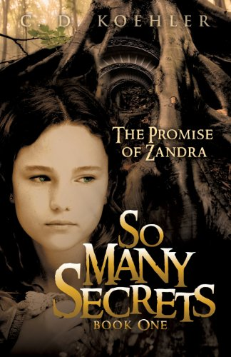9781613791271: The Promise of Zandra (So Many Secrets)