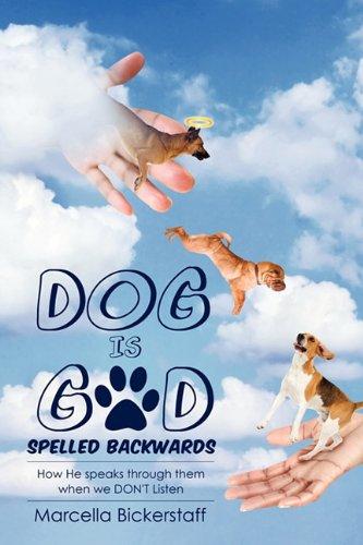 9781613791578: Dog Is God Spelled Backwards