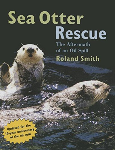 9781613835319: Sea Otter Rescue: The Aftermath of an Oil Spill