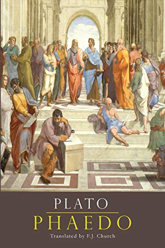 plato immortality of the soul essay View this term paper on immortality of the soul in the phaedo such dialogues as the republic the phaedrus and the symposium make clear that socrates has certainly.