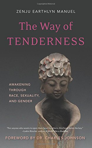 The Way of Tenderness: Awakening through Race, Sexuality, and Gender: Manuel, Zenju Earthlyn