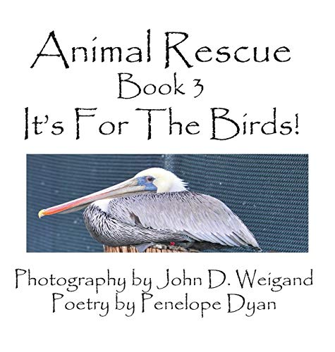 9781614772217: Animal Rescue, Book 3, It's for the Birds!