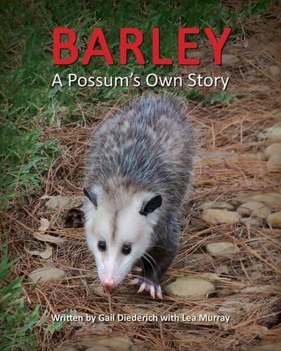 9781614932758: Barley, A Possum's Own Story
