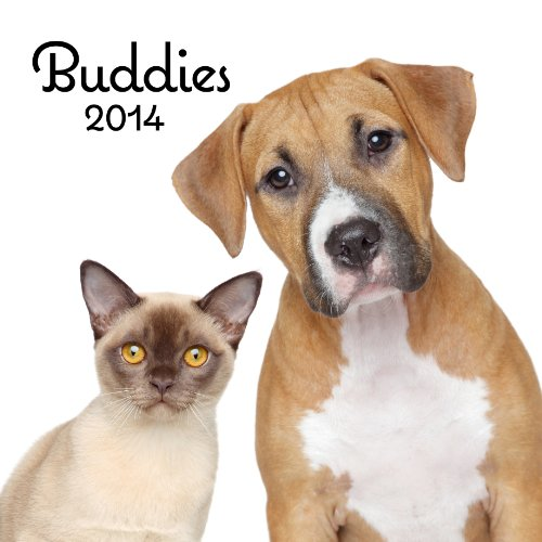 2014 Buddies Wall Calendar: DaySpring