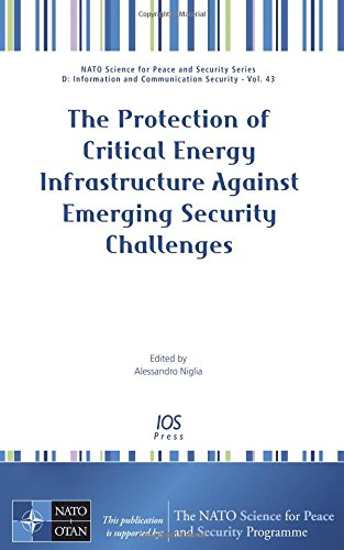The Protection of Critical Energy Infrastructure Against Emerging Security Challenges: A. Niglia