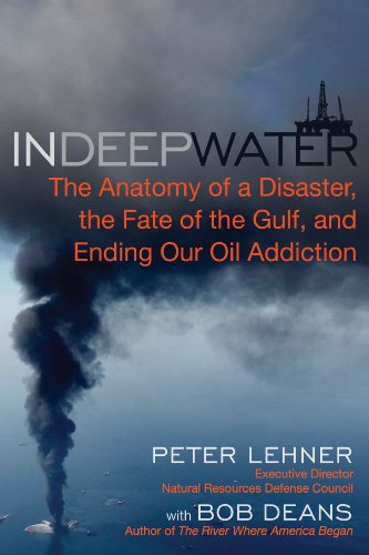 9781615190355: In Deep Water: The Anatomy of a Disaster, the Fate of the Gulf, and Ending Our Oil Addiction