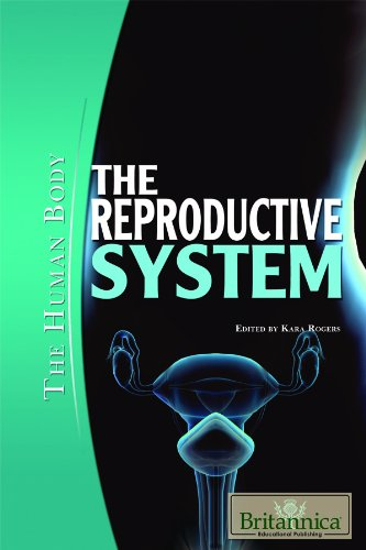 The Reproductive System (Human Body (Rosen Educational Publishing)): Rosen Education Service