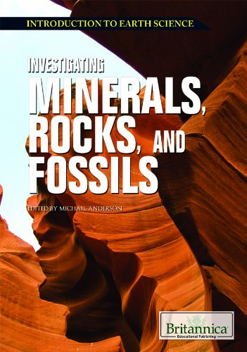 9781615305001: Investigating Minerals, Rocks, and Fossils (Introduction to Earth Science)