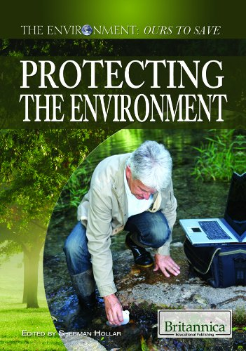 9781615305032: Protecting the Environment (The Environment: Ours to Save)