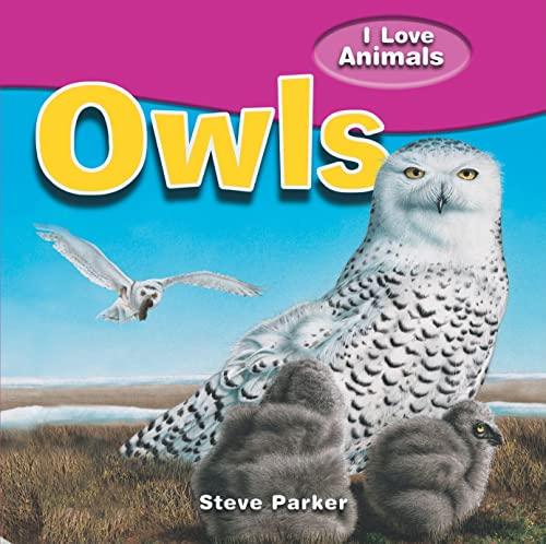9781615332359: Owls (I Love Animals)