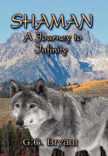 9781615822485: Shaman: A Journey to Infinity