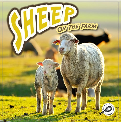 Sheep on the Farm (Farm Animals) (9781615902675) by Joanne Mattern