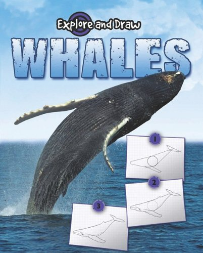 Whales (Explore & Draw) (161590493X) by Thompson, Gare
