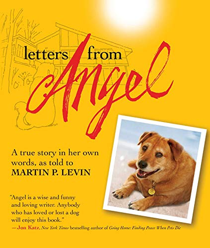 9781616084578: Letters from Angel: A True Story In her Own Words