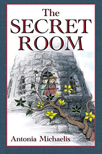 9781616089603: The Secret Room