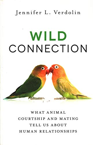9781616149468: Wild Connection: What Animal Courtship and Mating Tell Us about Human Relationships