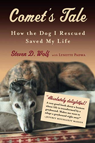 9781616203238: Comet's Tale: How the Dog I Rescued Saved My Life