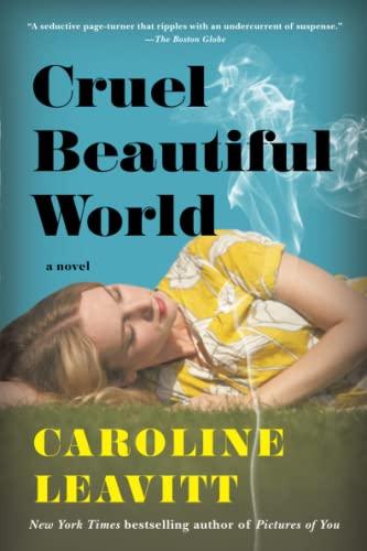 9781616207373: Cruel Beautiful World: A Novel