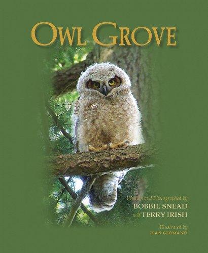 9781616233440: Owl Grove