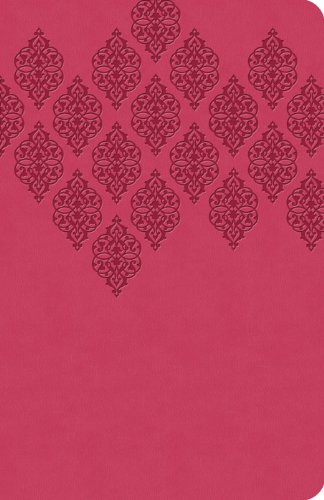 9781616269401: The KJV Study Bible (Pink) (King James Bible)