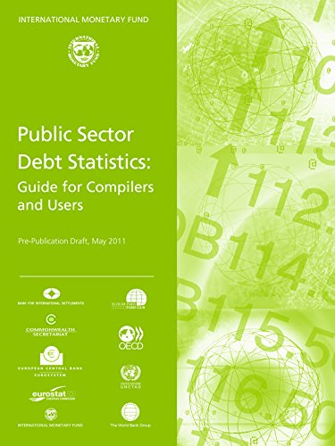 9781616351564: Public Sector Debt Statistics: Guide For Compilers And Users