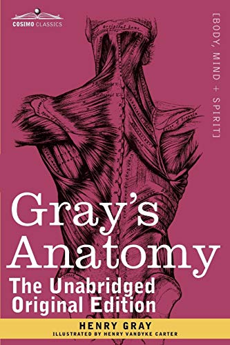 9781616404697: Gray's Anatomy: Descriptive and Surgical