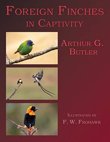 Foreign Finches in Captivity (2nd Edition Reprint): Butler, Arthur G.;