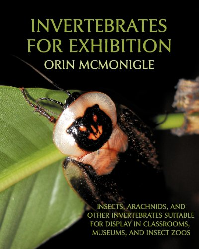 9781616461058: Invertebrates for Exhibition: Insects, Arachnids, and Other Invertebrates Suitable for Display in Classrooms, Museums, and Insect Zoos
