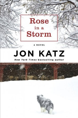 9781616647087: Rose in a Storm (Large Print)