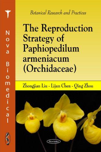 The Reproduction Strategy of Paphiopedilum Armeniacum (Orchidacae): Liu, Zhongjian; Chen, Lijun; ...