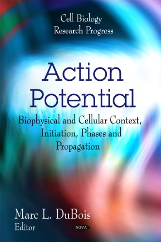 9781616688332: Action Potential: Biophysical and Cellular Context, Initiation, Phases and Propagation (Cell Biology Research Progress)