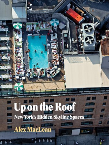 9781616890506: Up on the Roof: New York's Hidden Skyline Spaces